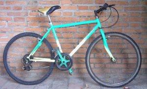La vecchia mountain bike che usiamo nei campi