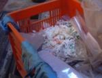 sacchetto di plastica biodegradabile